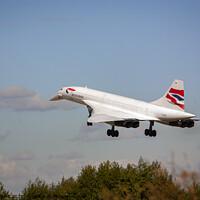 Buy canvas prints of Concorde Landing by Nigel Wilkins