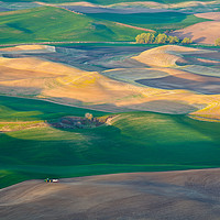 Buy canvas prints of Painted Hills of Palouse, Southeastern Washington by David Roossien