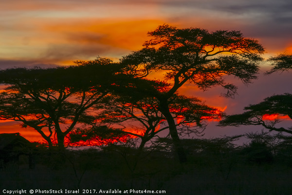 Red African Sunset Framed Mounted Print by PhotoStock Israel