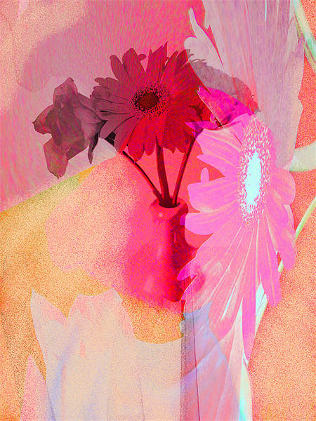 floral abstract Canvas print by joseph finlow canvas and prints