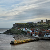 Buy canvas prints of Whitby Harbour by Sarah Couzens