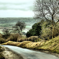 Buy canvas prints of West Heslerton by Sarah Couzens