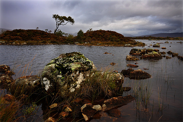 Rannoch moor Canvas Print by James Mc Quarrie