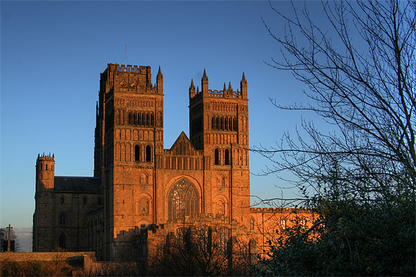 Durham Cathedral Canvas Print by Steve Wilson