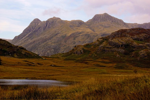 Blea Tarn and the Langdales Canvas print by Kleve