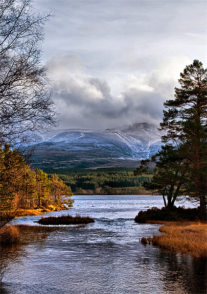 The Coming of Winter to the Cairngorms Framed Print by Jacqi Elmslie