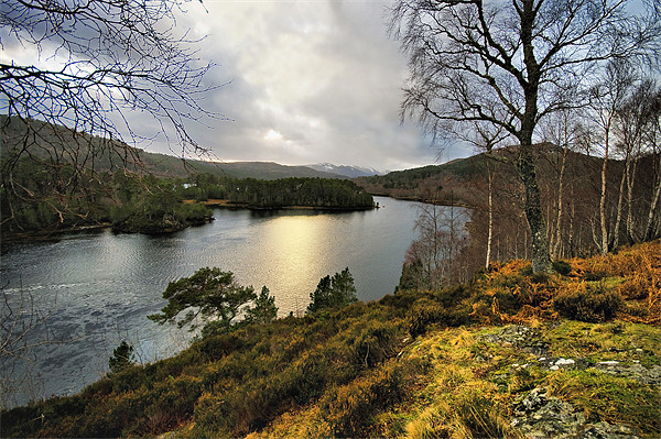 Glen Affric in Winter Framed Print by Jacqi Elmslie