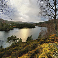 Buy canvas prints of Glen Affric in Winter by Jacqi Elmslie
