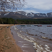 Buy canvas prints of Waves on the beach at Loch Morlich by Jacqi Elmslie