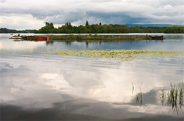 Evening Light on Lake Menteith Canvas print by Jacqi Elmslie