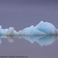 Buy canvas prints of Lonely Ice by James Buckle