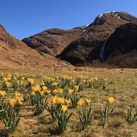 Buy canvas prints of Glen Nevis In Spring by James Buckle