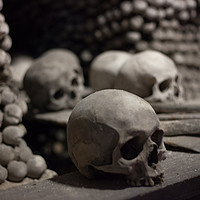Buy canvas prints of Skulls of Kutná Hora by James Buckle