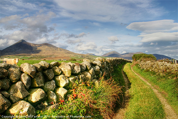 Pathway to the Mourne Mountains Canvas print by David McFarland