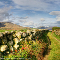 Buy canvas prints of Pathway to the Mourne Mountains by David McFarland