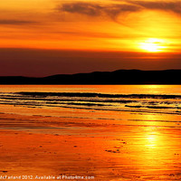 Buy canvas prints of Golden Strand by David McFarland