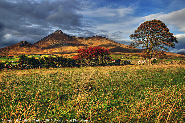 Autumn in the Mournes Canvas print by David McFarland
