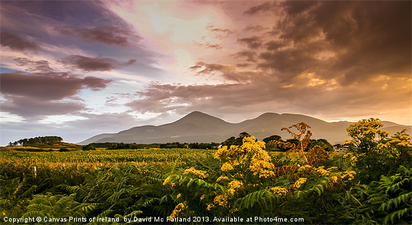 Sunset over the Mournes Canvas print by David McFarland
