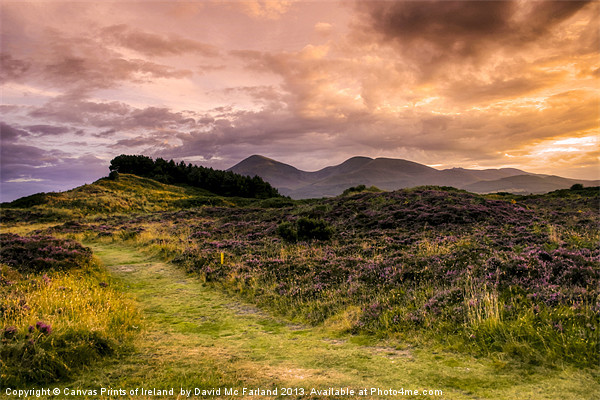 Sunset over Slieve Donard Canvas print by David McFarland