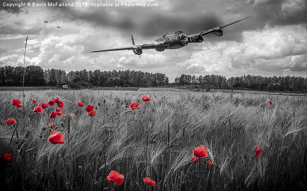Lest we forget Canvas print by David McFarland