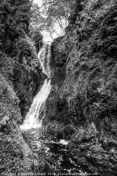 Glenariff waterfall Canvas print by David McFarland