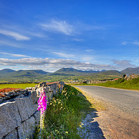 Buy canvas prints of Summertime in the Mournes by David McFarland