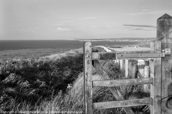 View from Mussenden Canvas Print by David McFarland
