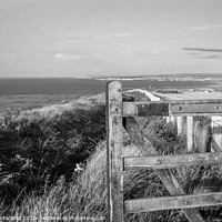 Buy canvas prints of View from Mussenden by David McFarland