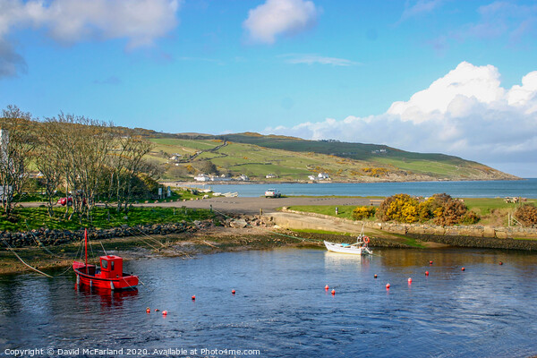 Cushendun harbour on the scenic Antrim coast in Northern Ireland Canvas Print by David McFarland