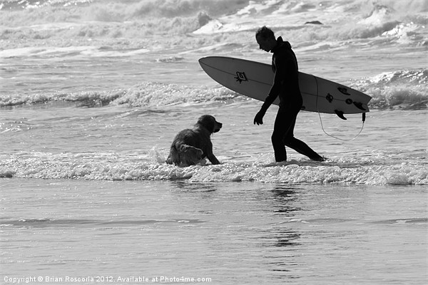 One Surfer And His Dog Canvas print by Brian Roscorla