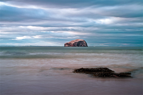 The Bass Rock from Seacliff Canvas print by Finan Fine Art Prints