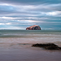 Buy canvas prints of The Bass Rock from Seacliff by Finan Fine Art Prints