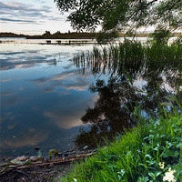 Buy canvas prints of Reflecting over Lake of Menteith by Stephen Mole