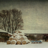 Buy canvas prints of Hay bales in the snow by Stephen Mole