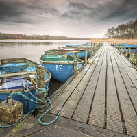 Buy canvas prints of Boats moored to Jetty at Filby by Stephen Mole