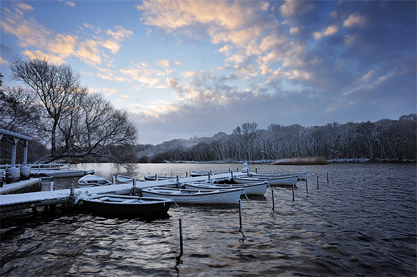 Rowing boats in Snow Print by Stephen Mole