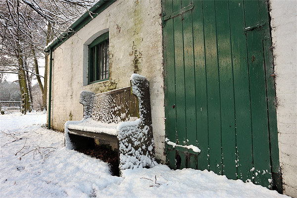 Green door and bench Framed Print by Stephen Mole