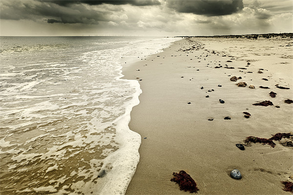 Summer rain winterton Canvas Print by Stephen Mole