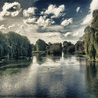 Buy canvas prints of Foots Cray Meadows by Dave Windsor