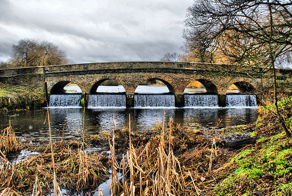 5 Arches in hdr Print by Dave Windsor