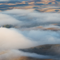Buy canvas prints of Palouse Morning Mist by Mike Dawson