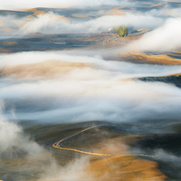 Buy canvas prints of Palouse Gold by Mike Dawson