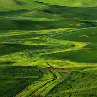 Buy canvas prints of Ribbons of Green by Mike Dawson