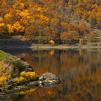Buy canvas prints of Autumn Illusion by Mike Dawson