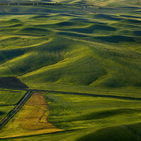 Buy canvas prints of Textures of the Palouse by Mike Dawson