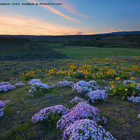 Buy canvas prints of Outdoor field by Mike Dawson