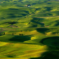 Buy canvas prints of Palouse Morning by Mike Dawson
