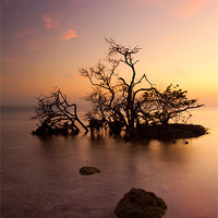 Buy canvas prints of Florida Keys Sunset by Mike Dawson