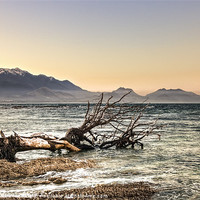 Buy canvas prints of Kaikoura Impressions by Andreas Hartmann
