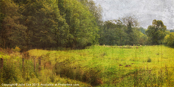 Bottom of the Meadow Canvas print by Julie Coe